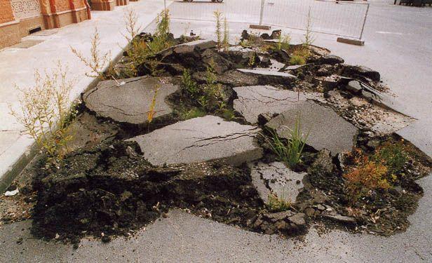 7. Mai 2015: Wir gestalten Zwicky Süd: Thema Aussenraum